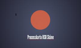 Processkarta HSO Skåne
