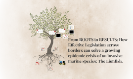 Copy of From ROOTS to RESULTS: How Effective Legislation across bord