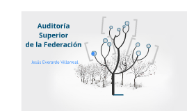 Auditoría Superior de la Federación Parte II