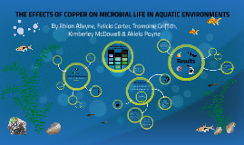 THE EFFECTS OF COPPER ON MICROBIAL LIFE IN AQUATIC ENVIRONME