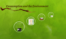 Consumption and the Environment
