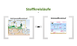 Copy of Stoffkreisläufe 2