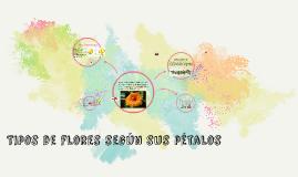 Copy of Tipos de flores según sus pétalos