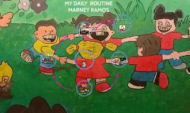 My rutine diary