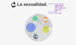 Copy of sexualidad