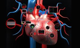 Copy of Sistema Cardiovascular Humano-Enfermedades y cuidados de enfermeria.