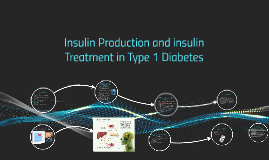 Insulin Production and insulin