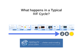 5.14 What Happens in a Typical IVF Cycle