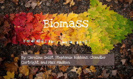 Copy of Biomass