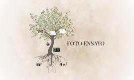 FOTO ENSAYO