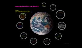 Copy of contaminación ambiental