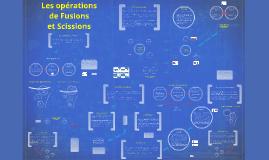 Chapitre 3 : Les fusions et les scissions (2015)
