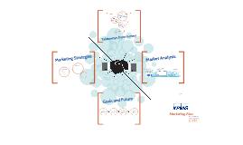 Copy of KPMG Marketing Plan
