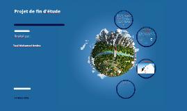Copy of Impact des transformations énergétique sur l'environnement