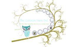 Copy of Owl template