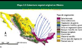 Tipos de Vegetación del Estado de Veracruz.