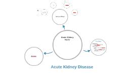Acute Kidney Disease