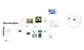 Copy of Anatomo-fisiologia del aparato reproductor de la yegua y algunas de sus principales patologias