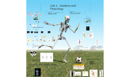Unit 1 - Anatomy and Physiology
