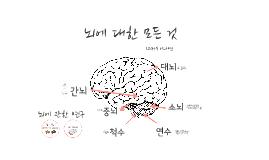 뇌에 대한 모든 것