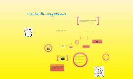 Copy of Inside Ecosystems