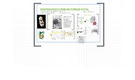 Copy of ISOINMUNIZACION MATERNO-FETAL