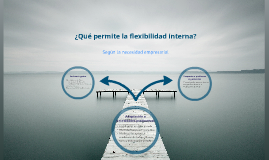 Flexibilidad interna en la empresa