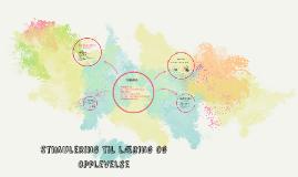 Copy of Stimulering til læring og opplevelse