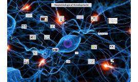 Neurobiological Development - 2016
