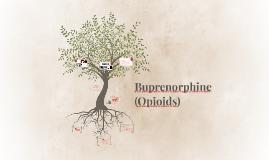 Buprenorphine (Opioids)