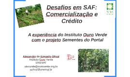 Desafios em SAF: Crédito e Comercialização
