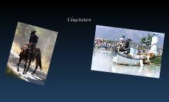 projet équitation