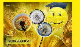 Copy of UTILIZACIÓN DE ACEITES ESENCIALES DE VARIEDADES DE OREGANO U