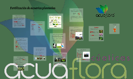 Fertilizacion de acuarios plantados