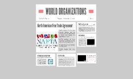 WORLD ORGANIZATIONS