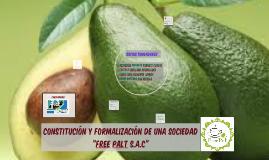 """Constitución de una Sociedad """"Free Palt S.A.C"""""""