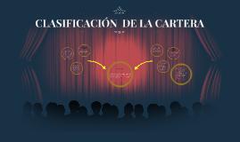 Copy of CLASIFICACION DE LA CARTERA