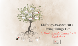 EDF3035 Assessment 2
