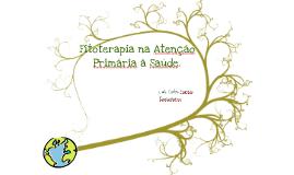 Cópia de Copy of fitoterapia basic