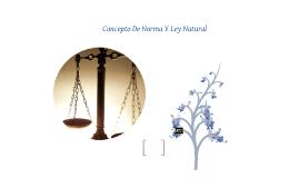 CONCEPTO DE NORMA Y LEY NATURAL