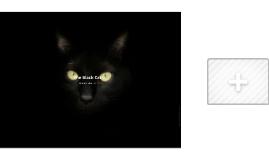 black cat presentation