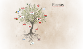 Biomas 6º ano