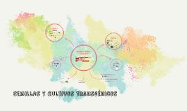 Semillas y cultivos transgénicos