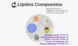 Copy of Lípidos Compuestos