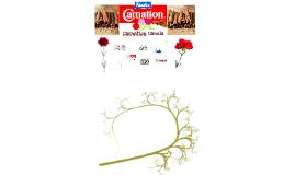 Carnation canela