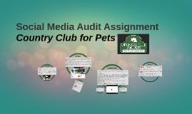Social Media Audit Assignment