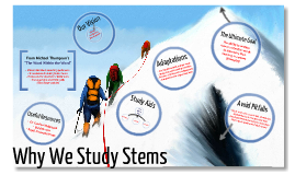 GT Parent Academy - Stems Study