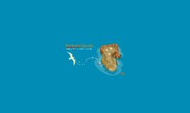 Senkaku Islands- M401