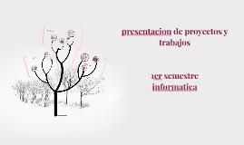 presentacion de proyectos y trabajos