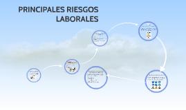 PRINCIPALES RIESGOS LABORALES